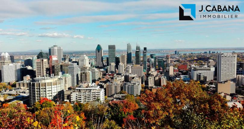 The 10 best neighborhoods to live in Montreal